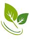https://specmed.pl/ikony/logo.png